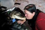 ქალს შინაურ ცხოველად ალიგატორი ჰყავს