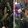 ოჯახმა საშობაო  ნაძვის ხეზე ნამდვილი ბუ აღმოაჩინა