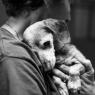 თავშესაფარში 18 წლის მიტოვებულმა ძაღლმა თავისი ადამიანი იპოვა და… აღარსად გაუშვა..