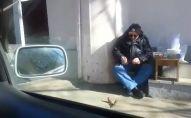 თბილისში კაცი ბეღურებს აპურებს