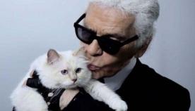 კარლ ლაგერფილდის მემკვიდრე შესაძლოა მისი კატა გახდეს