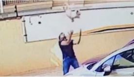 მამაკაცმა მეცხრე სართულიდან გადმოვარდნილი ძაღლი დაიჭირა (ემოციური ვიდეო)