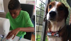 12 წლის ბიჭმა მიაგნო საშუალებას, რითაც უპატრონო შინაურ ცხოველებს დაეხმარება