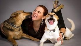 მეორე ძაღლი - გონიერი მიდგომა