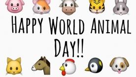 4 აპრილს ცხოველთა დაცვის საერთაშორისო დღეა
