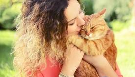 რამდენიმე მეთოდი, თუ როგორ მკურნალობენ სხვადასხვა ქვეყანაში ადამიანებს კატების დახმარებით