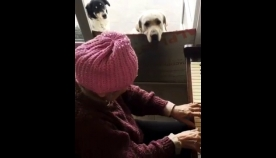 ბებო, ბონი, დუდა და ფორტეპიანო...