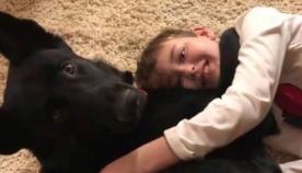 როდესაც უცნობმა ავადმყოფი ბავშვის ამბავი შეიტყო, 3700 კმ-ზე მეტი გაიარა, რათა პატარა თავის ძაღლთან შეეხვედრებინა