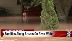 ეს ძაღლი წყალმა თითქმის დაფარა... ის გადაარჩინა კეთილმა ადამიანმა, რომელმაც შემდეგ სახლში წაიყვანა (ემოციური ვიდეო)