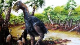 50 მილიონი წლის წინ არქტიკაში გიგანტური ფრინველები დასეირნობდნენ
