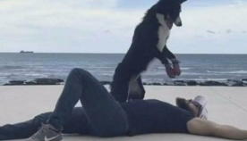 ძაღლმა გონებადაკარგულ პატრონს გულის მასაჟი ჩაუტარა (ემოციური ვიდეო)