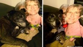 სევდიან ძაღლს აჩუქეს სათამაშო პატრონის სახის გამოსახულებით