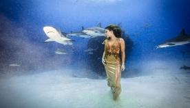 ბრაზილიელი მოდელი ზღვის მტაცებლების დასაცავად წყალში ზვიგენებთან ერთად ჩავიდა (+ფოტო)