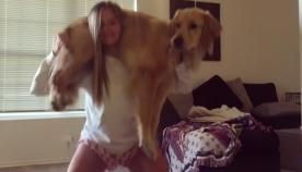 ბუქნები ძაღლთან ერთად! - ჯანსაღი ცხოვრების მოყვარულთა ახალი წამოწყება ჰიტი გახდა (+ვიდეო)