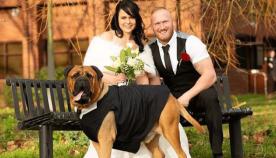 წყვილმა ქორწილი 3 თვით ადრე გადმოიტანა მას შემდეგ, რაც გაიგეს, რომ მათი ძაღლი დიდხანს ვერ იცოცხლებდა