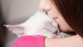 5 საშუალება, თუ  როგორ უნდა გამოხატოთ თქვენი კატის მიმართ სიყვარული