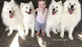ორი პატარა ბავშვი და ოთხი სამოედი ერთ სახლში