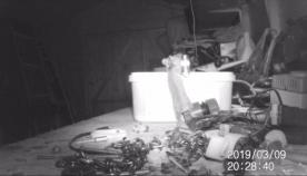 პენსიონერი ვერ ხვდებოდა, თუ ვინ ალაგებდა ყოველ ღამე მის სათავსოს, სანამ სათვალთვალო კამერა არ დააყენა (+ვიდეო)
