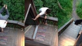 დათვის სახლიდან გასაგდებად გოგონამ აკრობატული ილეთი შეასრულა (უჩვეულო ვიდეო)