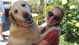 10 უზარმაზარი ძაღლი, რომლებიც გულით ისევ ლეკვებად რჩებიან