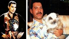 ფრედი მერკური და მისი კატები, რომლებიც შვილებივით უყვარდა (უნიკალური ფოტოები)