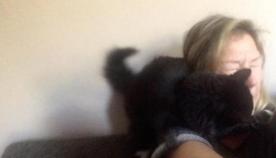 კატა მთელი ცხოვრება ცდილობს თავისი პატრონი სიმღერას გადააჩვიოს (სახალისო ვიდეო)
