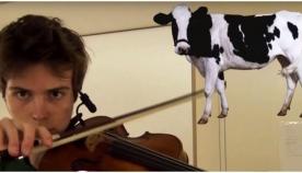 მუსიკოსი ვიოლინოს დახმარებით ცხოველების ხმის იმიტირებას საოცრად ასრულებს (+ვიდეო)