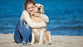 5 ნიშანი, რომ თქვენს ძაღლს ძალიან უყვარხართ