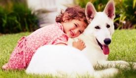 როდის რა სურს და რას განიცდის თქვენი ძაღლი