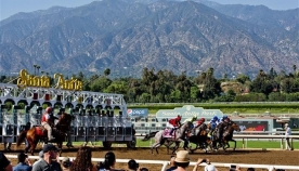 ცხენების მასიური სიკვდილიანობის გამო, კალიფორნიის იპოდრომი გაურკვეველი ვადით დაიკეტა