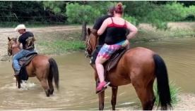 ცხენმა მომაბეზრებელი ტურისტები მდინარეში გადაყარა (სახალისო ვიდეო)