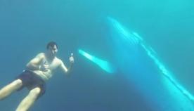 ცოლ-ქმარს ზღვაში ცურვა სურდა. სულ რაღაც 7 წამი და … ის დღე მთელი ცხოვრება ემახსოვრებათ! (+ვიდეო)
