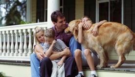 ქართველების თვალით: კატალონია - ადგილი, სადაც ცხოველები ბედნიერად ცხოვრობენ!