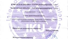 საერთაშორისო კინოლოგიური კავშირის გადაწყვეტილებით, კავკასიური ნაგაზის /თართი/ წარმოშობის ქვეყანა საქართველოა