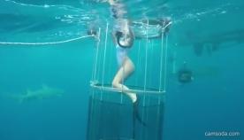 ამერიკელ პორნომსახიობს გადაღების დროს ზვიგენმა უკბინა (+ვიდეო)