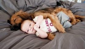 როდესაც ბავშვს ოთხფეხა მეგობარი აუცილებლად სჭირდება (ემოციური ფოტოები)