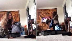 პატრონის მიერ მოწყობილ სიურპრიზს კატა აგრესიულად შეხვდა (ემოციური ვიდეო)