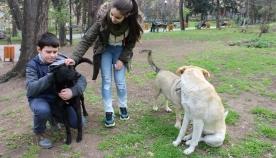 მოსწავლე-ახალგაზრდობის ეროვნული სასახლის მოსწავლეებმა მიუსაფარ ცხოველთა დაცვის საერთაშორისო დღე აღნიშნეს