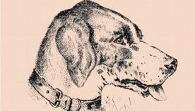 თავსატეხი:  იპოვეთ ძაღლის პატრონი ფოტოზე