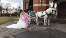 სიძემ თავის ქორწილში პატარძალი მიატოვა და 200 კგ. ღორის მოსავლელად სახლში გაიქცა