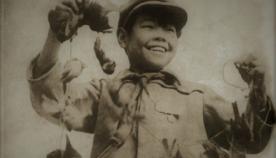 ფრინველების გენოციდი: როგორ გადაუხადა სამაგიერო ბუნებამ ჩინელებს ბეღურების განადგურების გამო