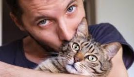 როგორ გეუბნებათ კატა