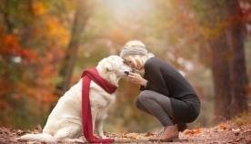 სპეციალისტებმა გამოიკვლიეს, თუ როგორ უნდა ესაუბროს პატრონი ძაღლს