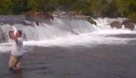 დათვებთან სელფის გადაღებისთვის ტურისტმა სიცოცხლე საფრთხეში ჩაიგდო (+ვიდეო)