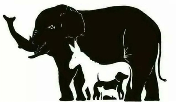 დღემდე ვერავინ თანხმდება, თუ რამდენი ცხოველია ფოტოზე