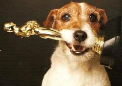 """ჰოლივუდმა ძაღლების """"ოსკარი"""" დააწესა"""