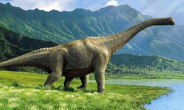 არგენტინაში ყველაზე დიდი დინოზავრის ჩონჩხი აღმოაჩინეს (+ ვიდეო)