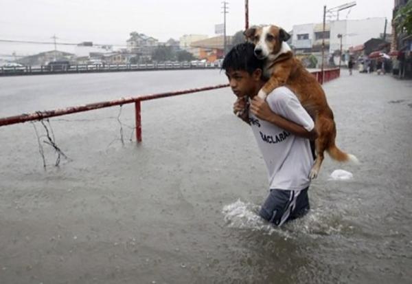 კეთილი ადამიანები, რომლებმაც ცხოველები გასაჭირში არ მიატოვეს (+ფოტო)