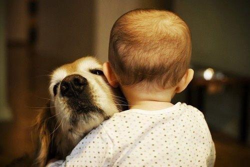 ნუ აუკრძალავთ ბავშვს ცხოველთან თამაშს