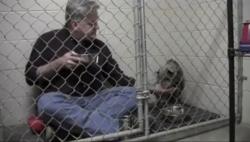 ვეტერინარი თავის უიმედო პაციენტთან ერთად საუზმობს (+ვიდეო)